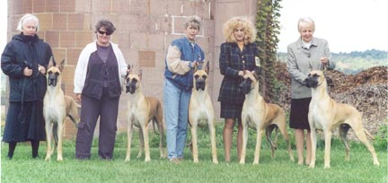the sly x electra litter at 15 months